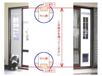 画像1: DFD◆ 小型犬用ドッグフリードア CFS-1750  【大型1個口】