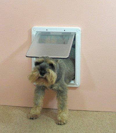 画像1: DFD◆ 室内引き戸・ふすま用ドッグフリードア中型犬用 JFM-1750  【大型1個口】