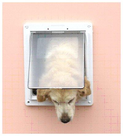 画像1: DFD◆ 室内引き戸・ふすま用ドッグフリードア大型犬用 JFL-2200  【大型1個口】